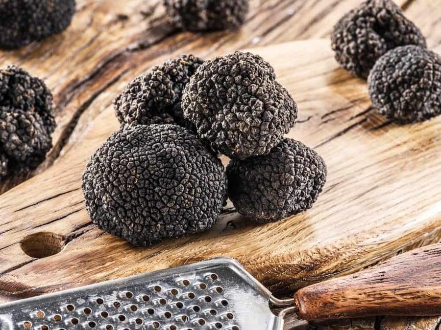 burgundy-truffle-dec102018-min