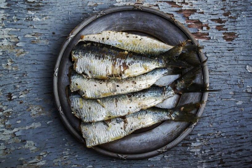 grilled-sardines-with-sauvignon-blanc-816